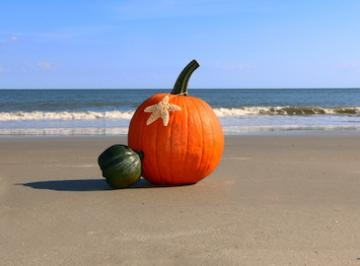 Pumpkin on the beach